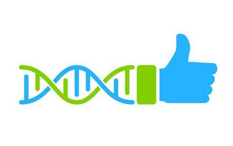 Die DNA des Erfolges